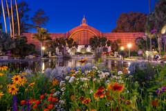 San Diego. Balboa Park (Vadim Spirkov) Tags: sandiego balboapark california nature outside night park