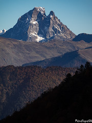 Pic du Midi d'Ossau (penelope64) Tags: pyrénées pyrénéesatlantiques béarn lescun ossau picdumididossau olympusem1 automne forêt