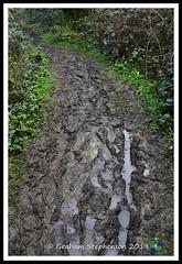 _GSD1426 (nowboy8) Tags: nikon nikond7200 hallington raithby bimble aw river flooding woods st peter togging publicfootpath