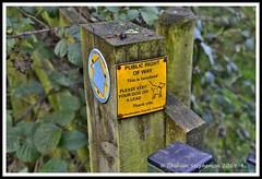 _GSD1406 (nowboy8) Tags: nikon nikond7200 hallington raithby bimble aw river flooding woods st peter togging publicfootpath