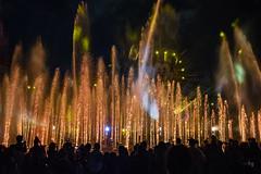 _DSC1925 (GMLSKIS) Tags: anaheim amusementpark california disney disneycaliforniaadventure nikond750 worldofcolor