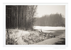 Snow (Listenwave Photography) Tags: iced river snowing snow story forest winter landscape sigma listenwave sepia foveon