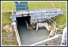 _GSD1349 (nowboy8) Tags: nikon nikond7200 hallington raithby bimble aw river flooding woods st peter togging publicfootpath