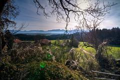 DSCF5768_69_70 (jabblonski) Tags: bayern oberland alpen view aussicht kleinhöhenrain