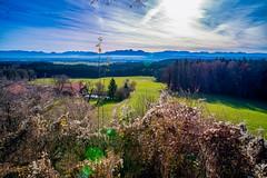 DSCF5746-Bea (jabblonski) Tags: bayern oberland alpen view aussicht kleinhöhenrain