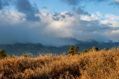 A-0927 (markbyzewski) Tags: sunrise palmerpark colorado coloradosprings tree sun cloud pikespeak mountain grass