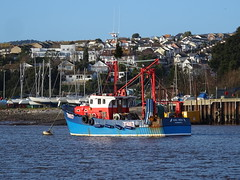 MFV GIRL RONA TH117  Fishing (Pelagic Trawler)  Call Sign MCAK6 (MMSI: 235004896) (guyfogwill) Tags: autumn boats boat bateaux bateau 1980 2019 abp boyant bateaudepêche associatedbritishports england fishing fisherman europe december coastal devon gb coastline fishingboat flicker devoran fishingvessel fogwill dschx60 guy port river marine harbour maritime nautical plage gbr greatbritan pelagictrawler guyfogwill girlrona midwaterottertrawls gbr000a23504 mmsi235004896 mcak6 uk southwest ship unitedkingdom sony vessel teignmouth riverteign workboat shaldon teignestuary teignbridge tq14 th117 visicksofdevoran teignmouthapproaches theshaldives