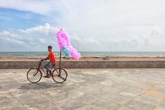 Beachside, Pondicherry 2019 (dr.subhadeep mondal's photography) Tags: streetphotography street subhadeepmondalphotography canon color candid life people public pondicherry india indianstreet incredibleindia