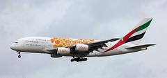 A380 | A6-EOU | AMS | 20191214 (Wally.H) Tags: airbus a380 a6eou emirates dubaiexpo2020 ams eham amsterdam schiphol airport