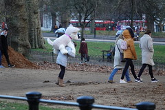 Winner! (ec1jack) Tags: hydepark royalparks westminster cityofwestminster london england britain uk europe ec1jack kierankelly december autumn park green birds parakeets wild ringneckedparakeets roseringed psittaculakramerimanillensis