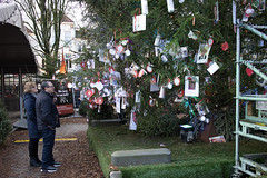 Christmas in Den Bosch. (PeteMartin) Tags: christmas denbosch tree wish xmas netherlands