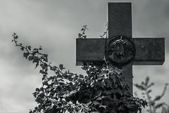 Ohne Worte --- Without words (der Sekretär) Tags: austria centralcemetry christian efeu friedhof grab grabmal grabstein gräber himmel kreuz kreuzigung kruzifix stein viennea wien zentralfriedhof cemetery christlich cross crucifix crucifixion crucify dead death gekreuzigt gestorben grave gravestone graveyard ivy sky sterben stone tombstone tot österreich