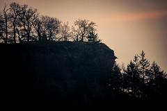 Waldmotive im Herbst_24-11-2019_0122 (Pixel-World) Tags: fototour spaziergang süntel wald weserbergland hessischoldendorf niedersachsen deutschland