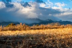 A-0928 (markbyzewski) Tags: sunrise palmerpark colorado coloradosprings tree sun cloud pikespeak mountain grass