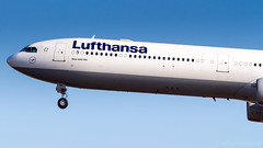 Airbus A340-642 D-AIHL Lufthansa (William Musculus) Tags: fraport frankfurt am main rhein frankfurtmain fra eddf airport flughafen spotting aviation plane airplane william musculus airbus a340642 daihl lufthansa a340600 lh dlh