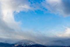 A-0935 (markbyzewski) Tags: sunrise palmerpark colorado coloradosprings tree sun cloud pikespeak mountain grass