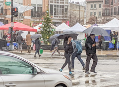 Pedestrian Christmas (Tim Brown's Pictures) Tags: washingtondc architecture buildings urban business street streets city neighborhoods urbanrenewal renovation 14thstreet historicbuildings trafficpedestrians umbrellas rain washington dc unitedstates