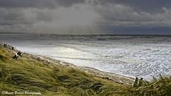 a winter's tail (RCB4J) Tags: sony sony18250mmf3563dtaf sonyslta77v sonyalpha ayrshire ayrshirecoast adventure art babygrace beach clydecoast dogwalkadventures dogwalkingphotography dogs irvinebeach landscapes on1 on1pics photography rcb4j ronniebarron sea scotland alphalandscape