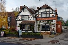 Bourne End, Black Lion (Dayoff171) Tags: boozers buckinghamshire england europe gbg2020 pubs publichouses gbg greatbritain uk unitedkingdom