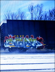 glare (timetomakethepasta) Tags: glare freight train graffiti art csx csxt boxcar
