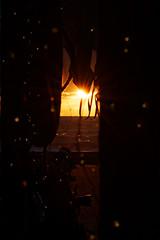 IMG_0920_hsi (Holgi_BS_63) Tags: november sunset mallorca palma