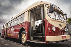 ACF Brill Trólebus (1948) (marcelo.guerra.fotos) Tags: bus buspicture busology busólogo buses brazil cool antique clouds detail flickr historicpreservation historic interestingness sky light museum old photography reflection sunset travel urban