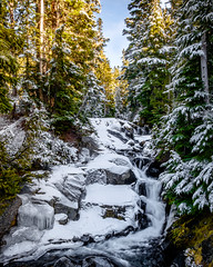 Paradise River (rich trinter photos) Tags: mountrainiernationalpark winter packwood washington unitedstatesofamerica landscape waterfall river northwest trinterphotos forest alpine