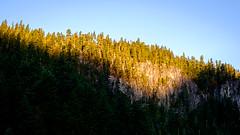 Rampart Ridge in Early Morning Light (rich trinter photos) Tags: mountrainiernationalpark winter ashford washington unitedstatesofamerica landscape rampartridge trinterphotos northwest longmire