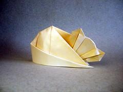 Cat Nap - Philip Schulz (Rui.Roda) Tags: origami papiroflexia papierfalten gato chat cat nap philip schulz