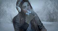 ♥ Ice Queen (Quistis Shippe) Tags: applier bento blush dandelion eyshadows face firstsnowmakeup genus izzie lashes lipstick makeup meshhead prop samposes secondlife single snow winter winterholiday wintershophop