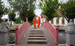 Wat Benchamabophit - Marble Temple (grab a pic) Tags: canoneos5dmarkiv canon eos 5d grabapic bangkok bangkokmetropolitanregion thailand 2019 watbenchamabophitdusitvanaram marbletemple buddhist temple buddhistmonk monk bridge