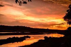 kruger_31Dec17_053.JPG (broni_1) Tags: sunset fauna nationalpark landscape flora travel family kruger limpopo southafrica