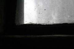 age (nikku_neko) Tags: texture grit dirt dust basementwindow basement light window