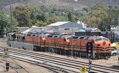 CLP12, CLF3 & CLF1 (rob3802) Tags: clfclass clpclass clp12 clf1 clf3 locomotive loco locodepot railway railyard rail diesellocomotive diesel dieselelectriclocomotive ssr southernshorthaulrailroad cootamundra nsw