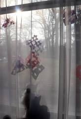 Cat (LacyChenault) Tags: tuxedocat cat cats tuxie window