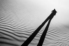 long (eb78) Tags: ca california blackandwhite bw monochrome greyscale grayscale deathvalleynationalpark shadow