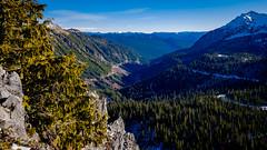 View down Stevens Canyon from Far Away Rock (rich trinter photos) Tags: mountrainiernationalpark winter packwood washington unitedstatesofamerica landscape trinterphotos northwest mountains