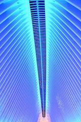 World Trade Center Transportation Hub (wyliepoon) Tags: new york city world trade center lower manhattan wtc transportation hub oculus westfield shopping mall architecture santiago calatrava path port authority trans hudson station terminal subway christmas night light