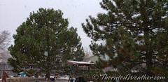 December 14, 2019 - A snow squall passes through. (ThorntonWeather.com)