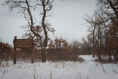 (Brett Whaley) Tags: 2019 december sherburnecounty uncasdunessna minnesota