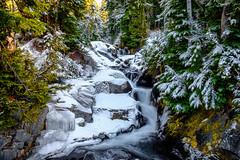 Paradise River (rich trinter photos) Tags: mountrainiernationalpark winter packwood washington unitedstatesofamerica landscape waterfall trinterphotos northwest mountains alpine river