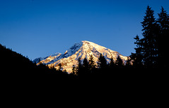 Early Morning Light from Longmire Meadow (rich trinter photos) Tags: mountrainiernationalpark winter ashford washington unitedstatesofamerica landscape trinterphotos longmire northwest forest mountain