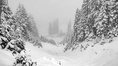 Snowy Landscape (rich trinter photos) Tags: mountrainiernationalpark winter ashford washington unitedstatesofamerica blackandwhite monochrome mountains alpine northwest storm trinterphotos landscape