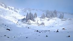 Blowing Clouds (rich trinter photos) Tags: mountrainiernationalpark winter ashford washington unitedstatesofamerica landscape mountains alpine trinterphotos storm northwest