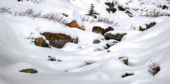 Edith Creek (rich trinter photos) Tags: mountrainiernationalpark winter ashford washington unitedstatesofamerica edithcreek mountains snow landscape trinterphotos creek northwest