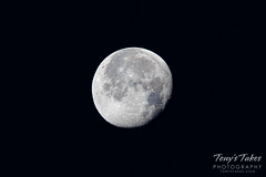 December 14, 2019 - A waning gibbous moon. (Tony's Takes)