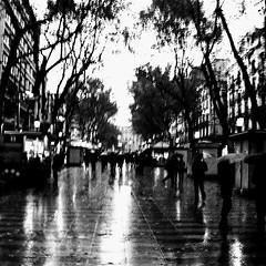 Rainy day in Barcelona (dalepedls) Tags: street travel trees people blackandwhite monochrome rain light shadows