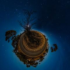 Field in Moonlight (Serendigity) Tags: moon field night countryside australia 360 sa southaustralia starscape mallala theta360 rural stars polar tinyplanet