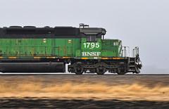 Running in the 40s (Jacob Narup) Tags: train trains railfan railroad railfanning bnsf bnsfrailway bnsfbarstowsub bn burlingtonnorthern bnsf1795 illinois localtrain local pan panshot panning panningshot hillsdaleil hillsdaleillinois hillsdale sd402 emd