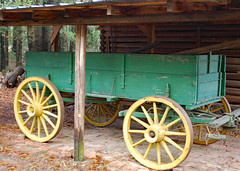 Green And Yellow Wagon. (dccradio) Tags: whiteoak nc northcarolina bladencounty wagon wagonwheel yellow green horsewagon garag parked shed building architecture tree trees branch branches treebranch treebranches ground pineneedles december winter harmonyhallplantation harmonyhall harmonyhallplantationvillage saturday weekend saturdayafternoon afternoon goodafternoon outside outdoor outdoors nikon d40 dslr historic